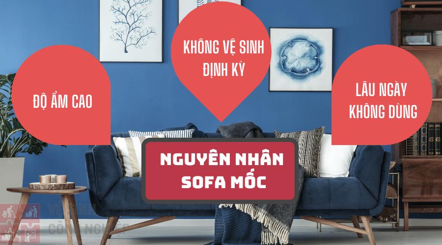 Dấu hiệu và nguyên nhân sofa bị mốc